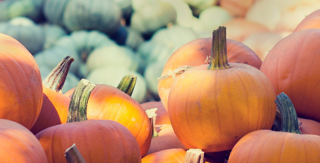 Carve a Pumpkin to Build Occupational Skills