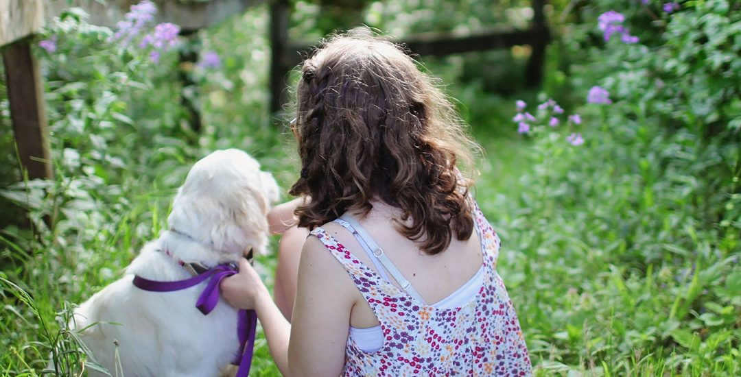 Child Mind Institute Features Willow Rossi, MS, OTR/L, and her facility dog, Tippy